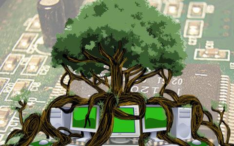 arbres ordinateur Ecosia écologie environnement planète Terre